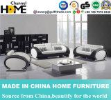 Популярные самомоднейшие софа типа 1+2+3 кожаный для живущий комнаты, белизны (HC6024)