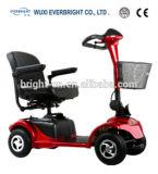Motorino elettrico di potere verde, E-Scoote