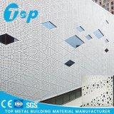Panneau artistique en aluminium de Peforated de façade de la CE d'OIN de décoration approuvée de mur