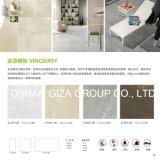 Graue Farben-Porzellan-Fußboden-Fliesen in 60*60cm (CK60910)