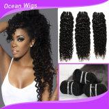 trame reali brasiliane dei capelli del tessuto dei capelli umani del Virgin di alta qualità del grado 8A