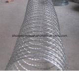 Singolo filo galvanizzato della bobina dell'acciaio inossidabile