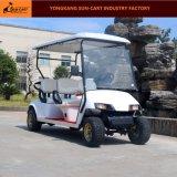 골프 코스를 위한 주문을 받아서 만들어진 Seater 4대의 전기 차량 전기 골프 카트