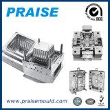 OEM型のマスターの熱いランナーのプラスチック注入型