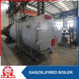Gas orizzontale industriale 10.5MW-1.0MPa e scaldacqua a petrolio