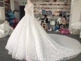 Aolanesの実質のサンプル花嫁の婚礼衣裳
