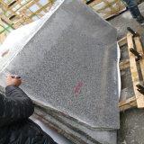 Polished 또는 타오른 회색 화강암 반 또는 큰 석판 (새로운 G603)