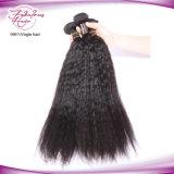 Paquets péruviens de cheveu du cheveu droit 100% de cheveu de Vierge d'armure non transformée crépue de cheveux humains