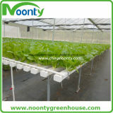 Nft Hydroponik-System für den Kopfsalat, der Belüftung-Rohr-landwirtschaftliches Bauernhof-Gewächshaus pflanzt