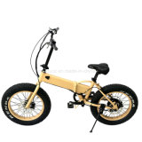 [فولدبل] [إن15194] [350و] [إ-بيك] [ديسك برك] كهربائيّة درّاجة [ليثيوم بتّري] محرّك كثّ مكشوف