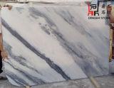 床タイルおよび壁のタイルのための自然な中国の風景画の大理石の平板