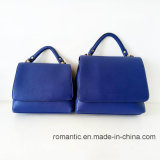 Sacchetto di mano della signora Handbags Popular Women Leather dell'unità di elaborazione del progettista di marca (NMDK-032701)
