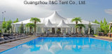 Großes Mischpartei-Hochzeits-Festzelt-Zelt für Hochzeitsfest in Südafrika