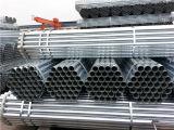 Tubo d'acciaio di BS1387 En39 ASTM A53 Q235B Cina galvanizzato con l'estremità di filetto