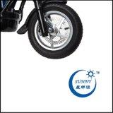 peso E-Twow, motorino elettrico S2 12ah Mater di 450W 10.70kg di Etwow