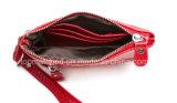 Handtas van de Zak van de Avond van de Portefeuille van de Dames van de Hand van het Pari van de Dames van de lage Prijs de Kleine
