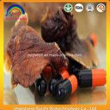 Suministrar la fábrica lúcida orgánica natural del extracto 12years del 100% Ganoderma
