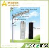 aleación toda de 20W Alumilum en una luz de calle solar integrada del LED con el sensor (5W-120W)