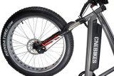 脂肪質のタイヤの48V 750W中間駆動機構モーターを搭載する電気雪の自転車
