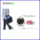 広告宣伝のギフトのエヴァのハンドバッグの女性硬貨の広告宣伝
