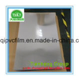 Película rígida do PVC do plástico desobstruído para o colar da camisa