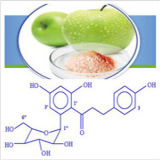 Het Plaatsen van de Kwaliteit van het Avondmaal van het Ingrediënt van het voedsel de Langzame Pectine van de Appel