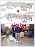 Pollame Slat e Support in Livestock con Low Cost Prefab House