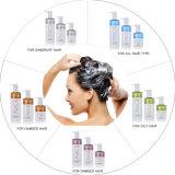 Shampooing frais de cheveux de la vente 2016 d'OEM de marque de distributeur de glace organique chaude de kératine