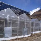 Kommerzielles landwirtschaftliches Multi-Überspannung PC Blatt-Gewächshaus