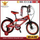 Unterschied-Art-und Anweisungs-Gebirgsfahrrad/Fahrrad für Kind