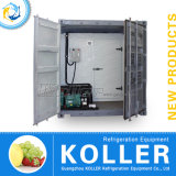 Modulare Kühlräume für Sale, Best Unit Price