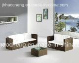 余暇の屋外の生きている庭の家具およびPEの屋外の藤の椅子
