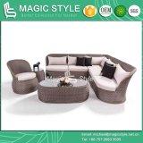 O sofá ajustado do Rattan do sofá do canto do sofá da combinação do sofá de canto da cisne ajustou-se (o ESTILO MÁGICO)