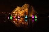 최신 판매 태양 정원 LED 옥외 거는 빛
