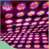 12W LED Grow Lights voor Garden Greenhouse