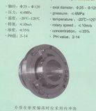 Nichtstandardisierte Schlamm-Pumpen-mechanische Dichtung (HT5)