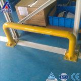Support de Pallete certifié par usine d'entreposage au froid de la Chine