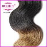 Оптовый уток волос цены по прейскуранту завода-изготовителя, человеческие волосы бразильянина волос цвета Omber