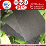 Jetzt Type von Impervious Materials Both Sides Textured Geomembrane