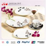De nieuwe Vierkante Ceramische Reeks Dishware van de Aankomst