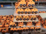 Los altos ganchos dobles de levantamiento de la velocidad balancearon las toneladas eléctricas de la grúa 2 del alzamiento (TWSK020)