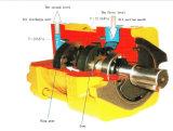 Pompe à engrenages interne hydraulique de la pompe de pétrole de vitesse 12.5MPa Nt3-D20f