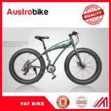 أسلوب جديدة درّاجة سمين 26 [فتبيك] مع إطار العجلة سمين مع تعليق شوكة