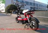 [48ف20ه] قوة اندفاع قوّيّة كهربائيّة درّاجة [350ويث500و] [إلكتريك موتور]