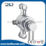 Le laiton en laiton exposé de corps manipule la valve de douche thermostatique