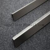 Projets de bureau d'hôtel de maison de garniture de tuile en métal d'acier inoxydable de décoration