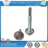 Vis Drilling de rondelle de la vis Ss410 d'acier inoxydable d'individu Hex de tête