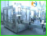 Haustier/Glasflaschen-Orangen-/Mangofrucht-Saft-Produktionszweig