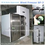 Congelador rápido aprovado Bf-2 da explosão do congelador do Ce para a indústria alimentar