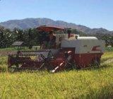Esteira rolante de Lovol, largura de corte de 2.0m, ceifeira de liga do arroz 88HP